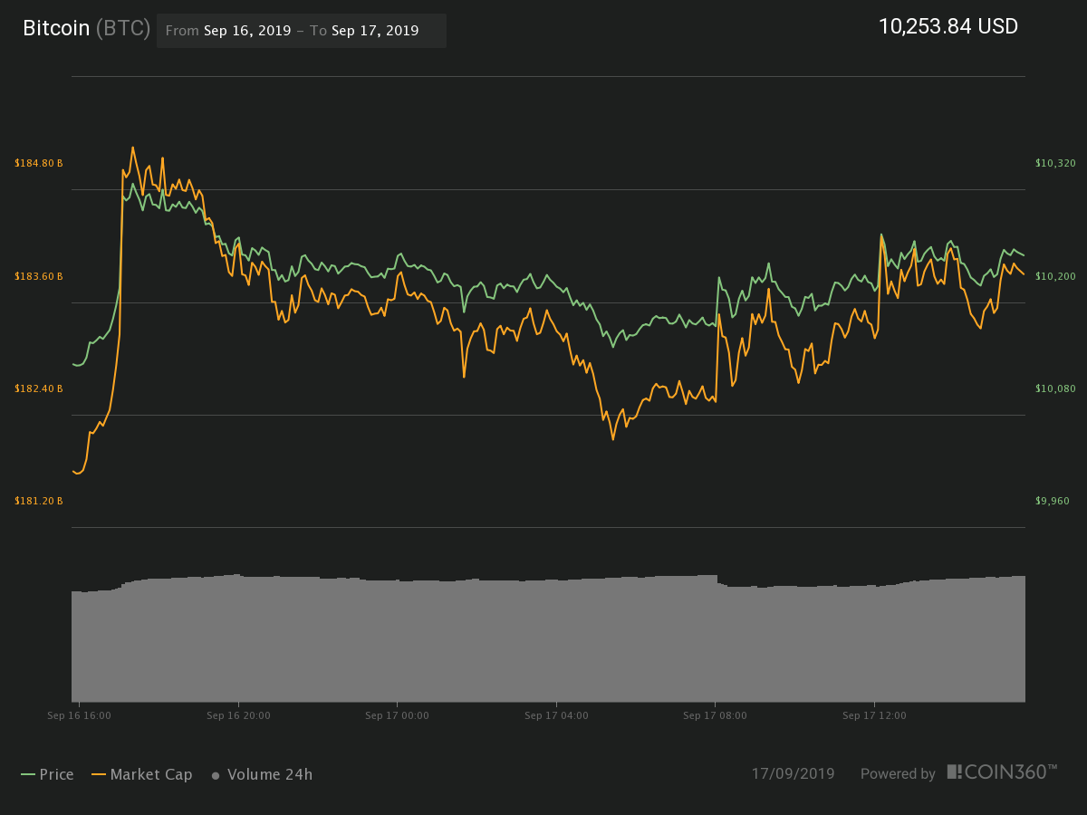 Bitcoin 24 hour price chart. Source:Coin360