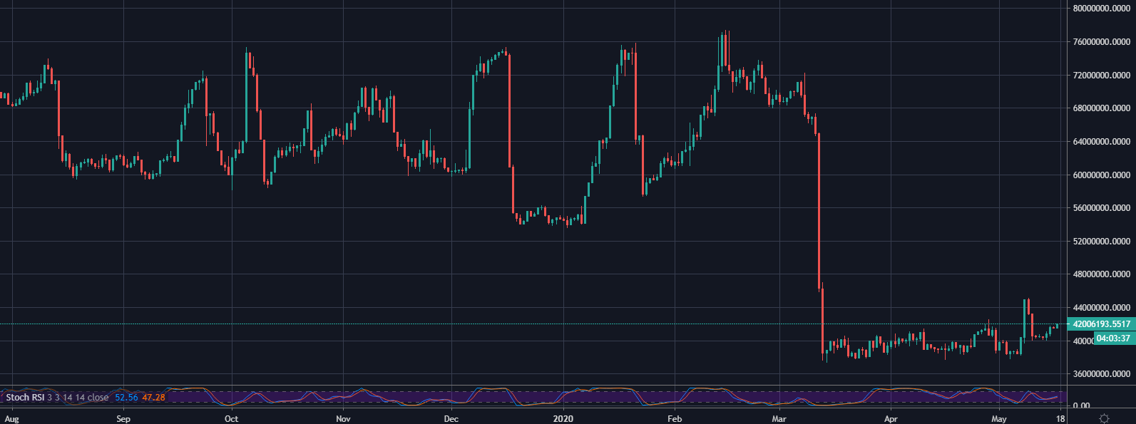 Bitfinex XRP/USD Longs 1D August 2019 - May 2020: TradingView